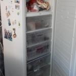 Морозидьник