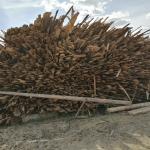 Продам обрезки дрова, дёшево