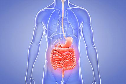 В Солигорском районе отмечается рост заболеваемости сальмонеллёзом и острыми кишечными инфекциями